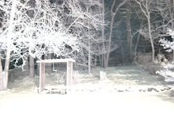 Floodlights bathe the scene in white