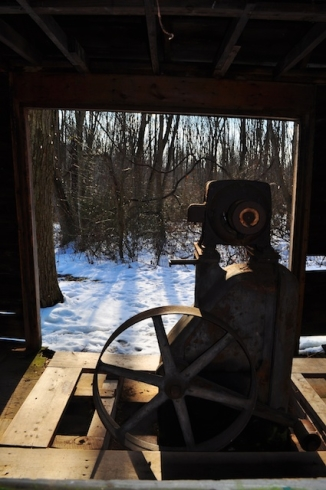 View from behind pump looking out into the woods
