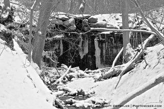 Pine Hollow Falls
