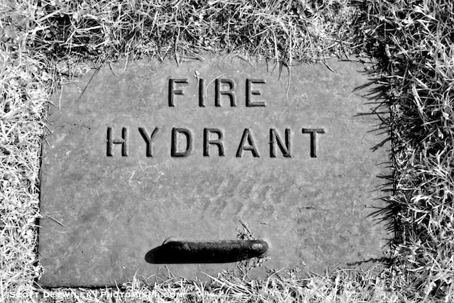 Hartwood Mansion Fire Hydrant Cover