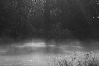 Misty pond illuminated by moonlight