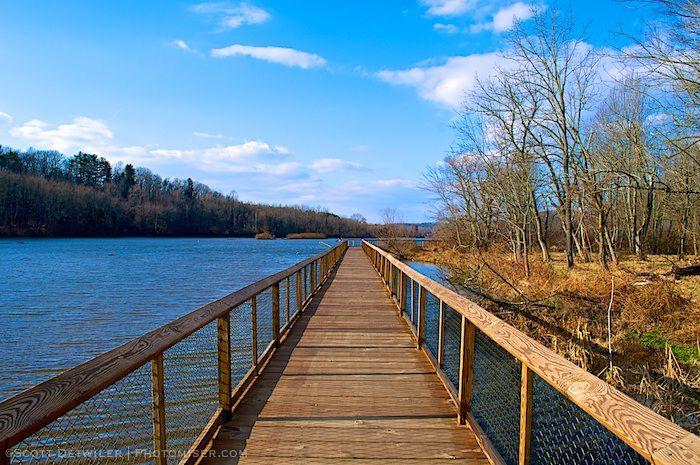 Boardwalk over lake
