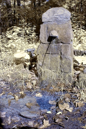 Artesian well at Jennings Environmental Education Center (a state park), Pennsylvania. False color IR.